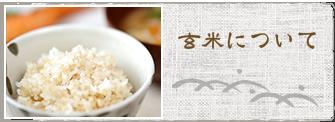 玄米について