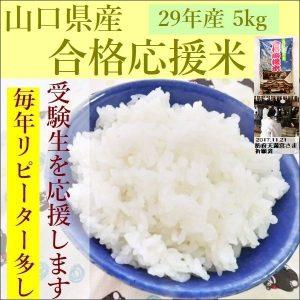 goukaku-29-05a